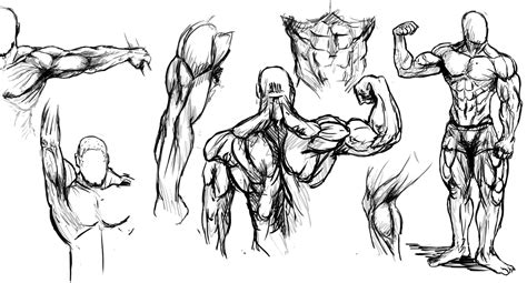 drawing of beach muscle man picture 7