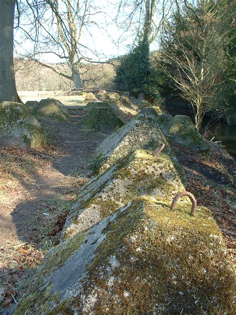 dragons teeth picture 15