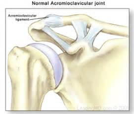 compression of the ac joint of the shoulder picture 6