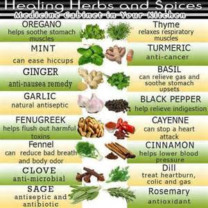 natural herbal plants remedy for singaw picture 2