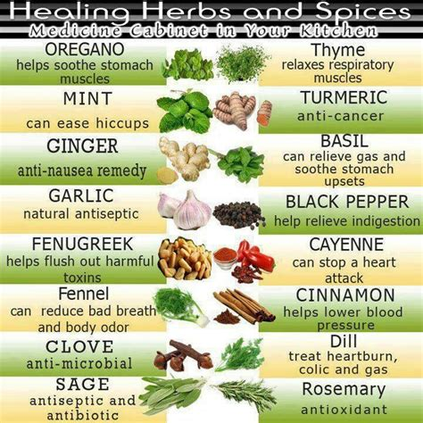 a list of natural herbs that increase penis picture 12