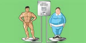 fat weight compared to muscle picture 6