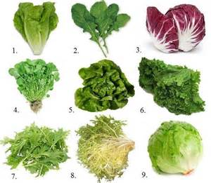 is green leafy lettuce good for people with picture 10