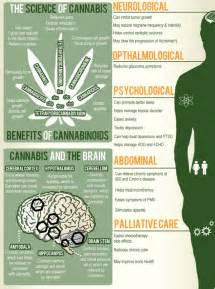 denver health benefit picture 3