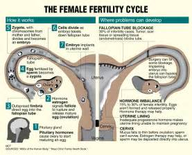 infertility weight gain picture 5