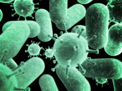 antibiotics bacterial infections picture 3