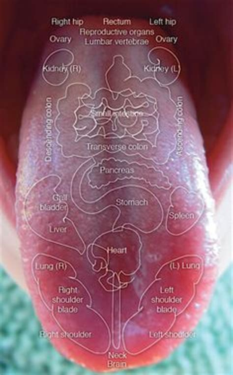 chinese medicine what are in purple teaballs picture 14