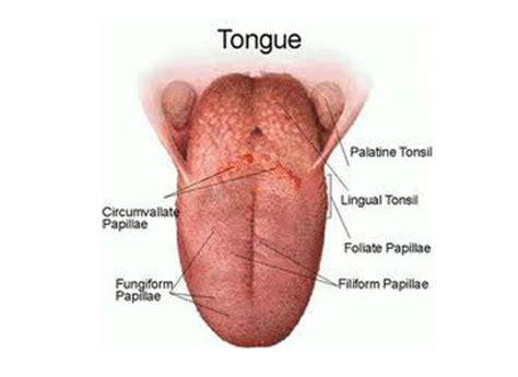 do cigarettes make genital warts worse picture 18