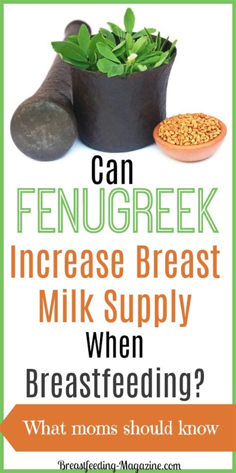 breastfeeding fenugreek picture 7