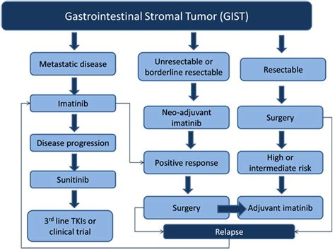 gastrointestinal stromal tumor stories picture 5