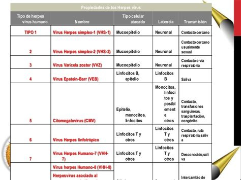herpes virus 7 picture 17