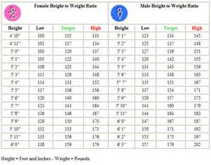 how much does the average el movement weigh picture 2