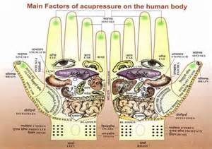 pressure points for liver function picture 2