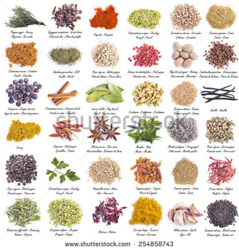 herbs india urdu and english list picture 1