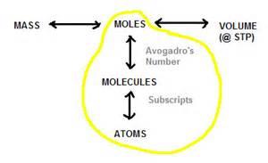 moles or molescus picture 1