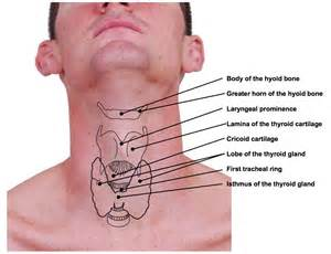 thyroid is elevated picture 7