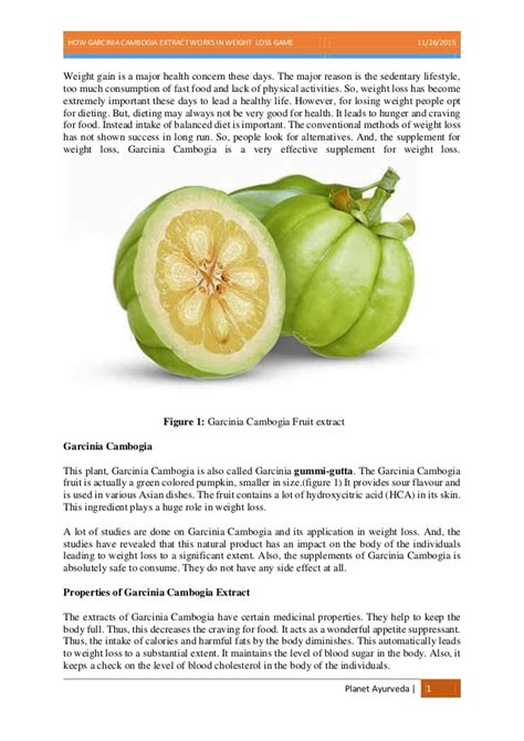 garcinia cambogia extract uses picture 3
