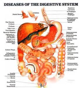 gastro intestinal problems picture 1