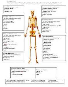 physical examination head to toe picture 6
