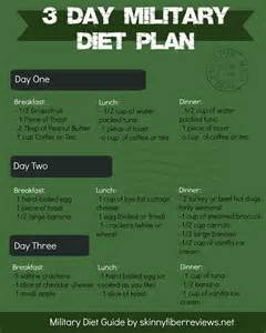 diet 11 days on 3 off picture 5