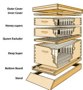 bee hive plans picture 9