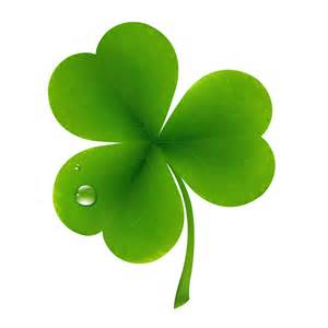 clover picture 19