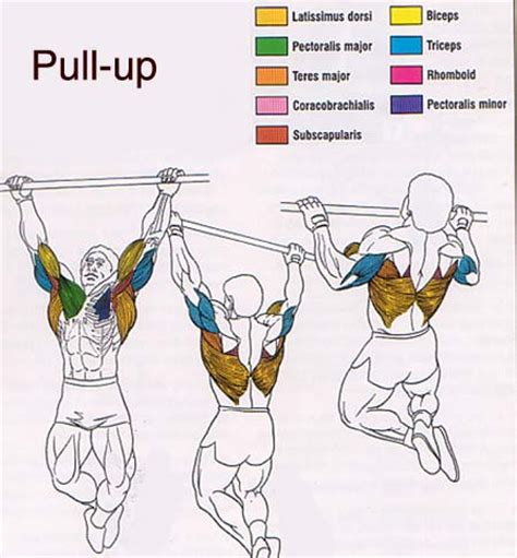 can you pull a muscle in the lower picture 16