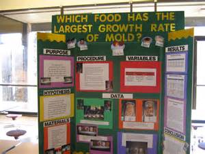 science fair projects yeast picture 7