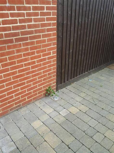 stop weeds growing between pavers picture 21