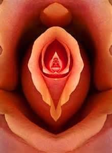 vigina lips picture 1