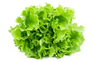 lettuce and cancer picture 1