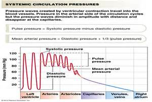 How to lower high blood pressure picture 6