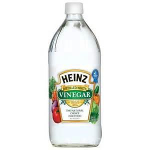 vinegar picture 1