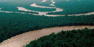 amazon picture 9