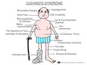 cushing's syndrome and boils acne picture 6