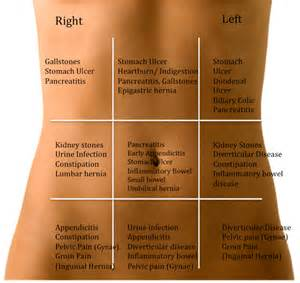 abdominal muscle injuries women picture 1