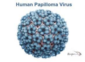 can human papilloma virus kill you picture 2
