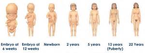 body aging stages with pics picture 13