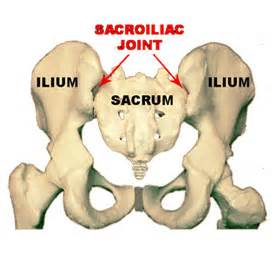 facet joint dysfunction picture 5