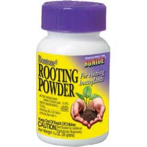 buy root growth hormone picture 5