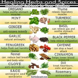 glossary of herbs and their uses picture 9