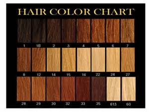 brown hair color charts picture 1