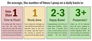 normal number of bowel movements daily picture 1