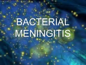 bacterial picture 15