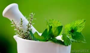 herbal medicine tools picture 6