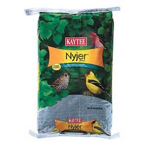 nyjer thistle free shipping picture 9