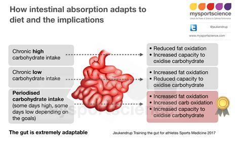 post surgicalgastro intestinal diet picture 17