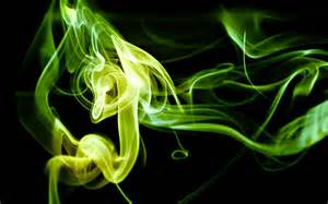 delaware smoke picture 11