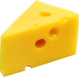 cheese picture 6