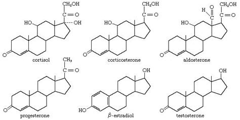 cholesterol testosterone and estrogen are examples of picture 2